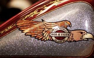 WR74 Jetster
